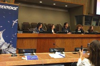 UN_panel2
